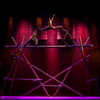 0002145_breathtaking-contemporary-cirque_400.png