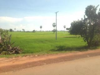 Mekong Express (3).jpg